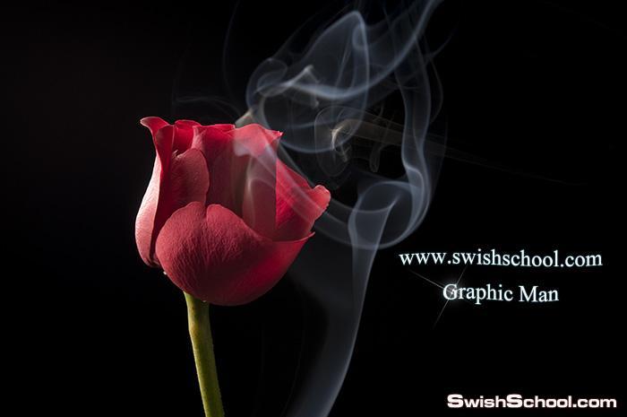 ستوك فوتو ورد احمر مع دخان عالي الجوده لتصاميم الفوتوشوب