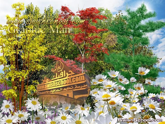 صور مقصوصه اشجار وزهورالغابه لتصاميم الفوتوشوب psd