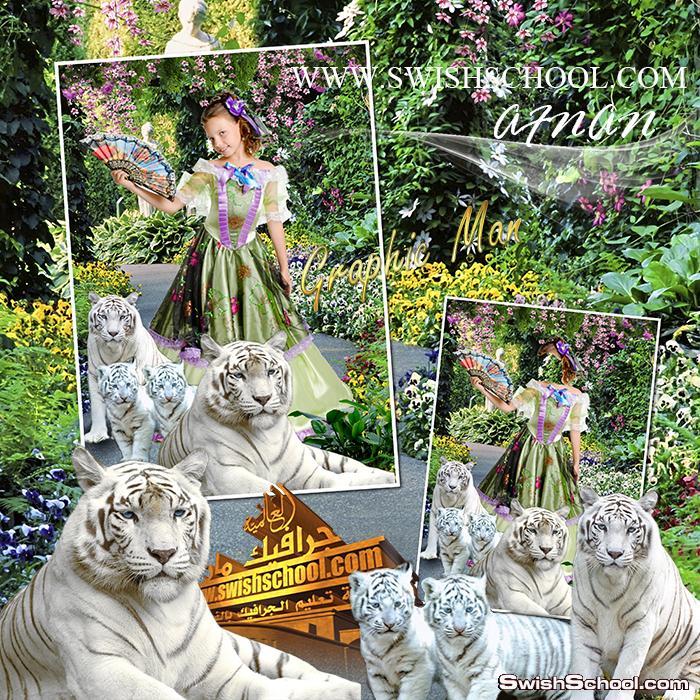 قالب تركيب بنت جميله مع النمور البيضاء متعدد الليرات عالي الجوده لاستديوهات التصوير psd