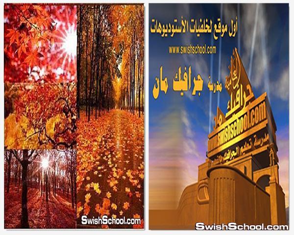 خلفيات الخريف الذهبيه عاليه الجوده للتصميم