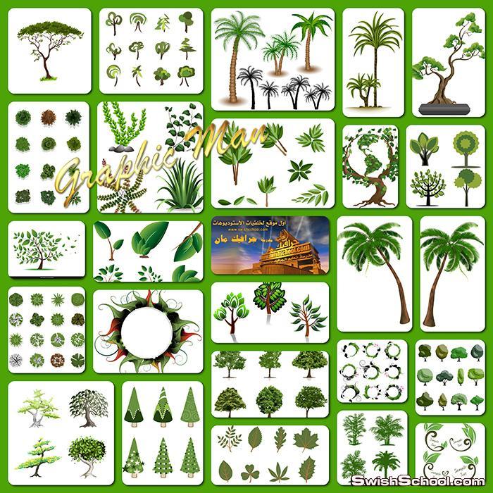 فيكتور اشجار ونخيل وورق اخضر ونباتات عاليه الجوده لبرنامج اليستريتور eps