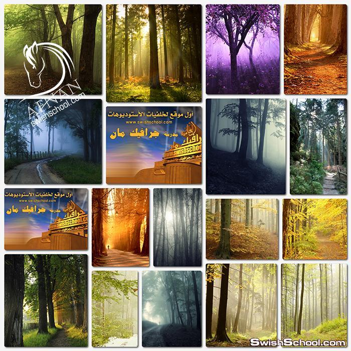 خلفيات جرافيك الغابات الساحره عاليه الجوده لتصاميم الدمج الاحترافي في الفوتوشوب jpg