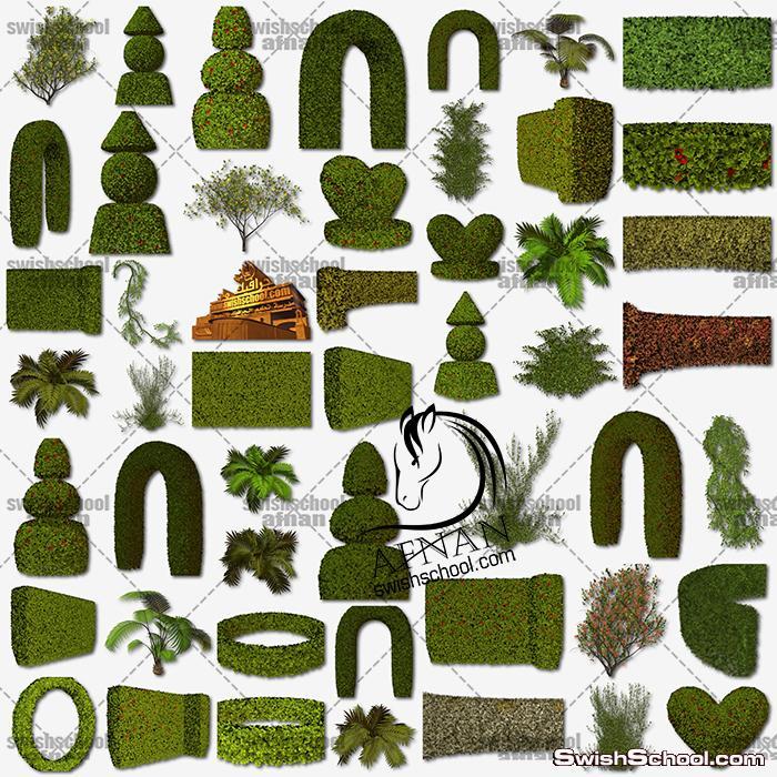 صور مفرغه نباتات وشجر الحدائق عالي الجوده لتصاميم الفوتوشوب png - الجزء الاول