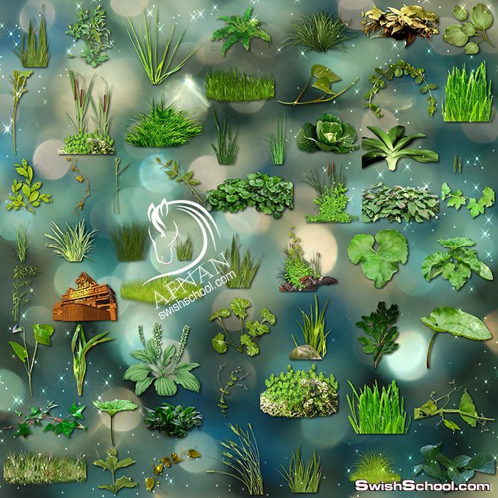 سكرابز عشب وحشائش خضراء بدون خلفيه للتصميم png