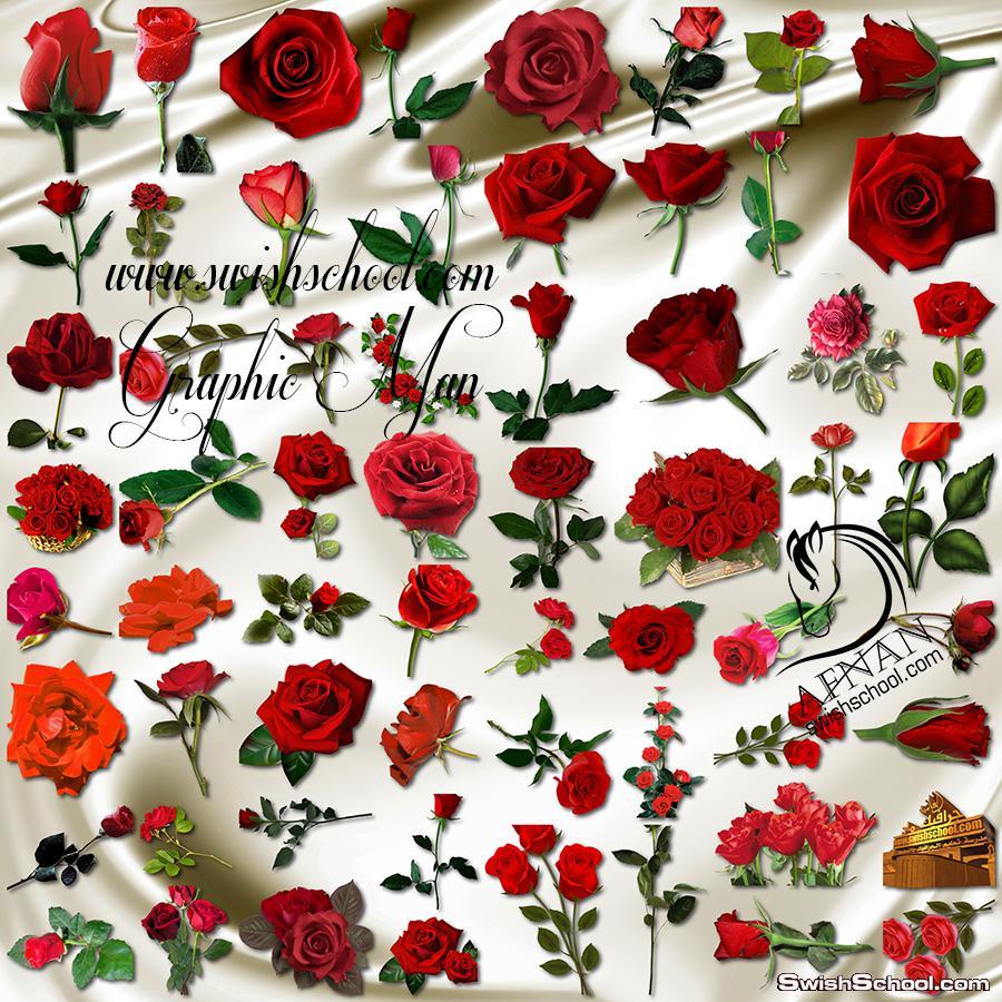 اجمل الورود الحمراء المفرغه عاليه الجوده png - ورد احمر لتزين كروت الافراح والمناسبات السعيده