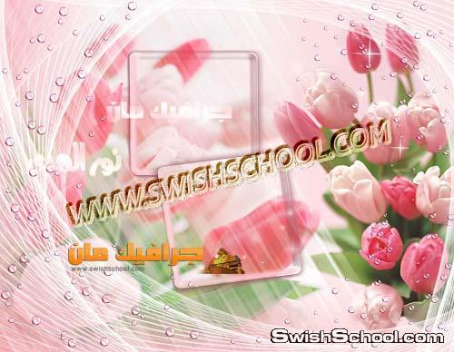 خلفيات استوديوهات للمناسبات 2013  - خلفيات الزهور الساحره  2013  - ملفات فوتوشوب  psd جرافيك