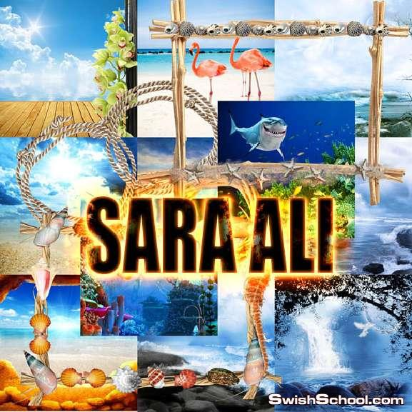 كليب ارت وخلفيات شاطىء البحر , حيوانات بحريه , طيور الشاطىء ,اشجار جوز الهند , ببغاء , غواص