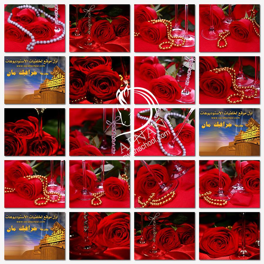 ستوك فوتو ورد احمر مع عقد ذهبي عالي الجوده لتصاميم الكروت والمناسبات jpg