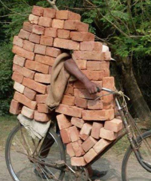 14513914310115 صور لن تراها سوى في الهند