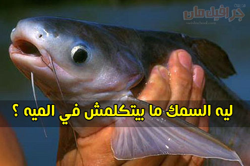 ليه السمك ما بيتكلمش في الميه ؟؟ .