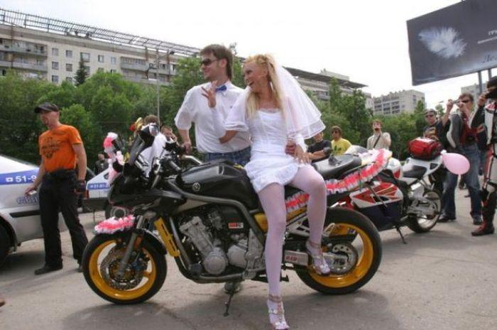 14591965002311 صور اغرب حفلات الزفاف في العالم
