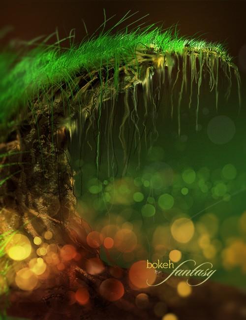 فرش بوكيه, فرشات فوتوشوب اضواء بوكيه, فرش فوتوشوب اضواء الاحلام, فرش الاحلام
