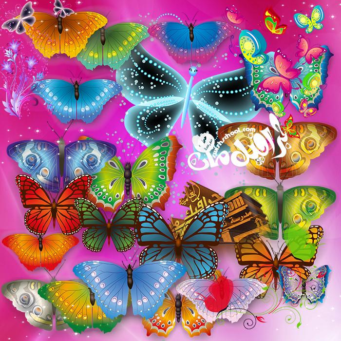 سكرابز فراشات الربيع psd - فراشات مفرغه بالوان مبهره لتصاميم الجرافيك