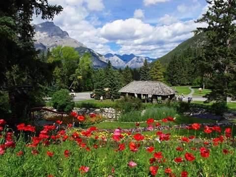 كندا 3 صور دوله كندا canada