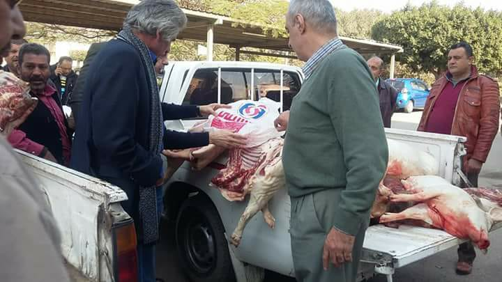 ذبح الخنازير وبيعها للمطاعم في القاهره 3 ذبح الخنازير وبيعها للمطاعم في القاهره