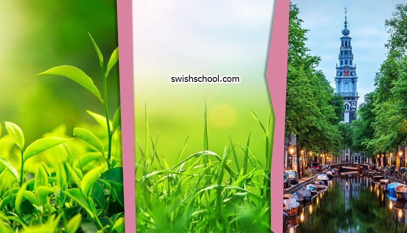 خلفيات موبايل باللون الاخضر HD 1 خلفيات موبايل باللون الاخضر Mobile Wallpapers HD