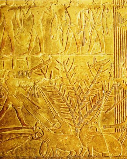 La chasse à lhippotame Saqqara mastaba de Mérérouka VIè Dynastie Egypte Antique La chasse à lhippotame, Saqqara, mastaba de Mérérouka, VIè Dynastie, Egypte Antique