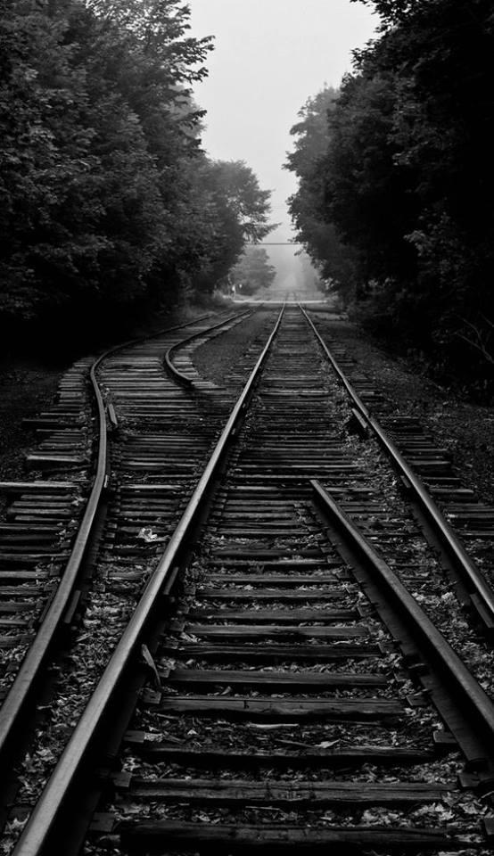 شريط السكه الحديد 18 صور قضبان السكه الحديد