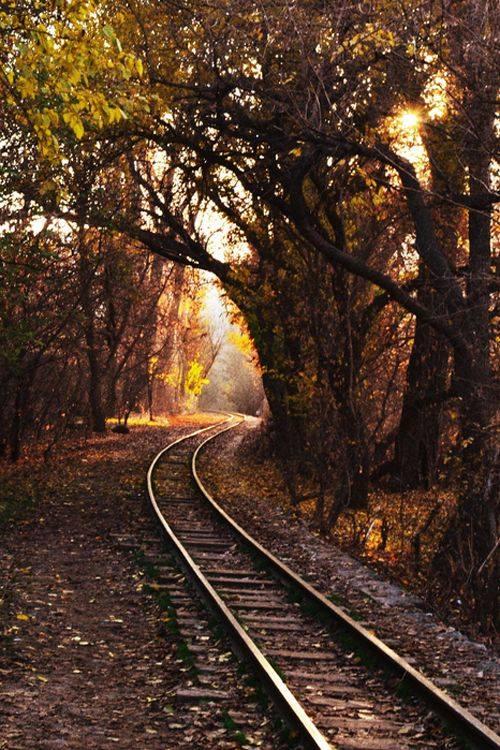 شريط السكه الحديد 29 صور قضبان السكه الحديد