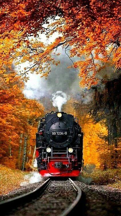 شريط السكه الحديد 36 صور قضبان السكه الحديد