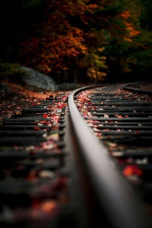 شريط السكه الحديد 4 صور قضبان السكه الحديد