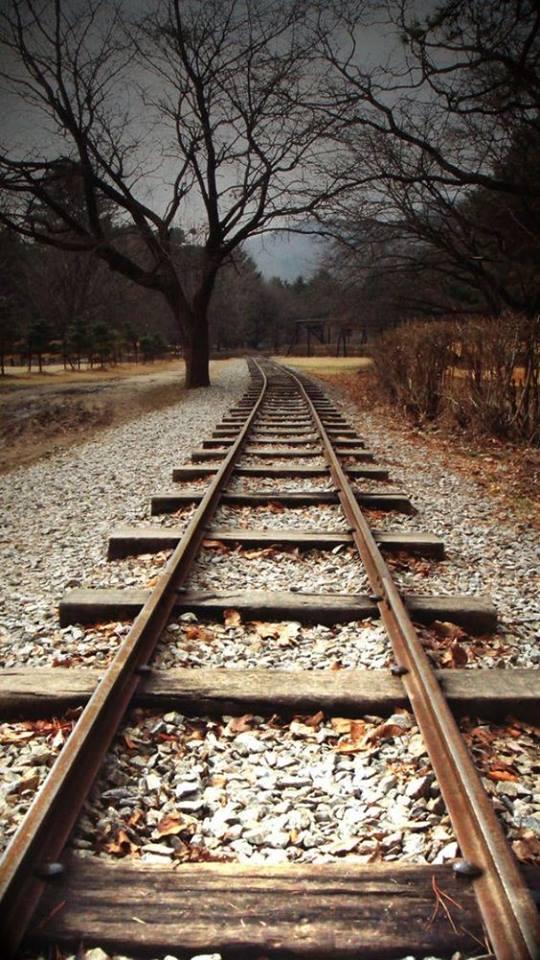 شريط السكه الحديد 5 صور قضبان السكه الحديد