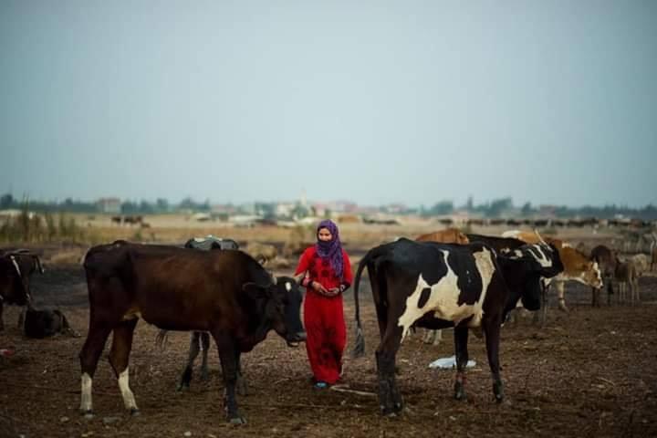 نساء مصر 13 صور المراه المصريه