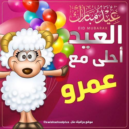 العيد احلى مع عمرو العيد احلى مع   اسماء اولاد   عيد الاضحى