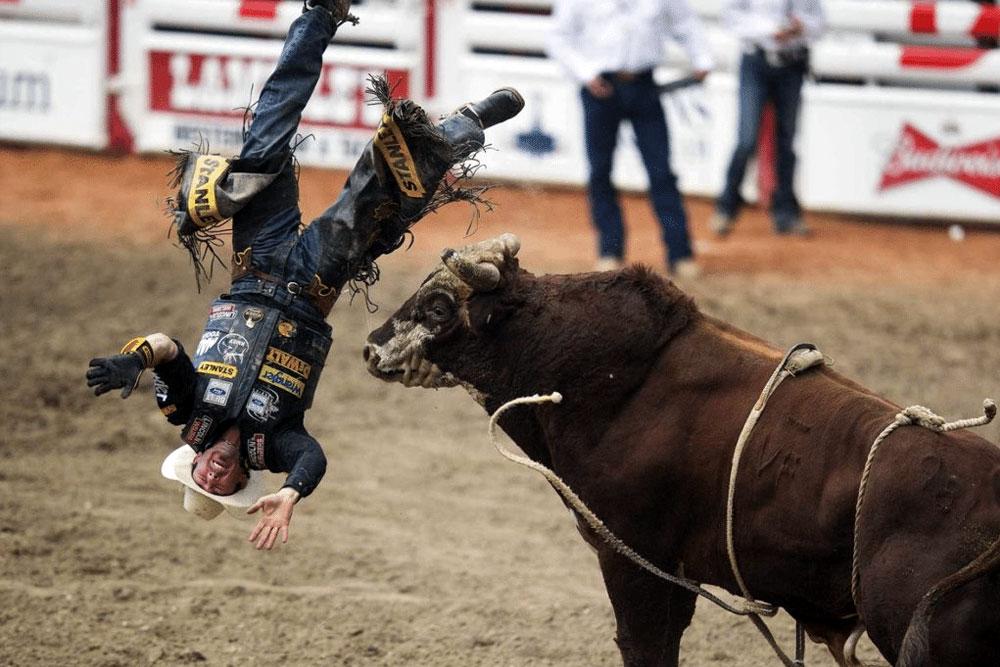 angry bull أغرب صور رياضيه في الوقت المناسب