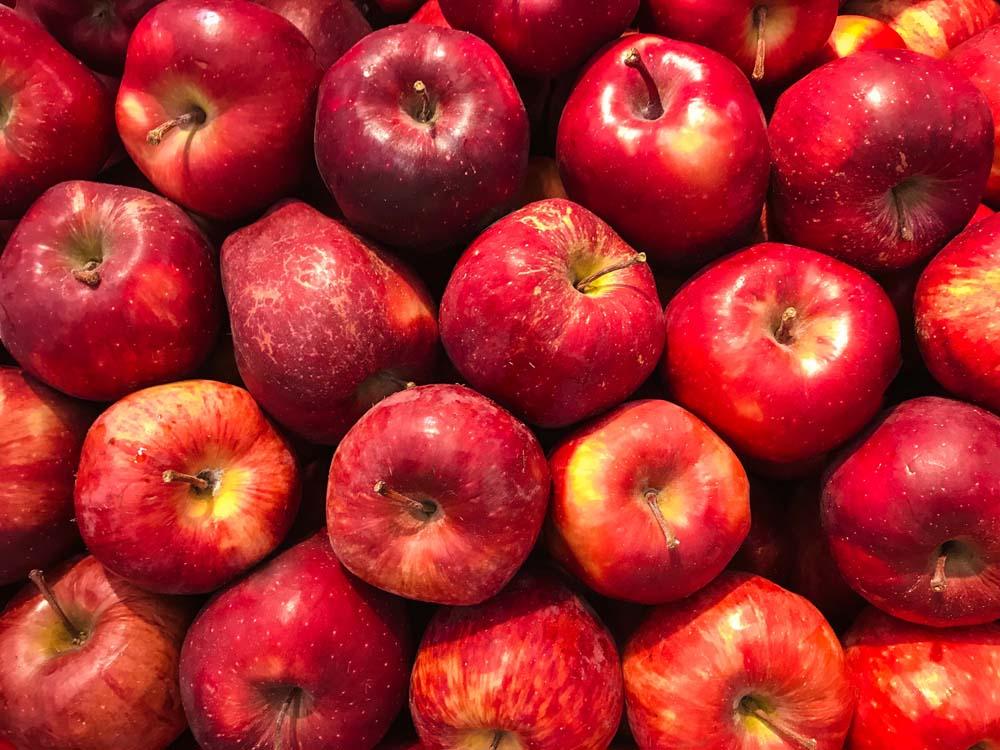 صور تفاح 12 صور التفاح