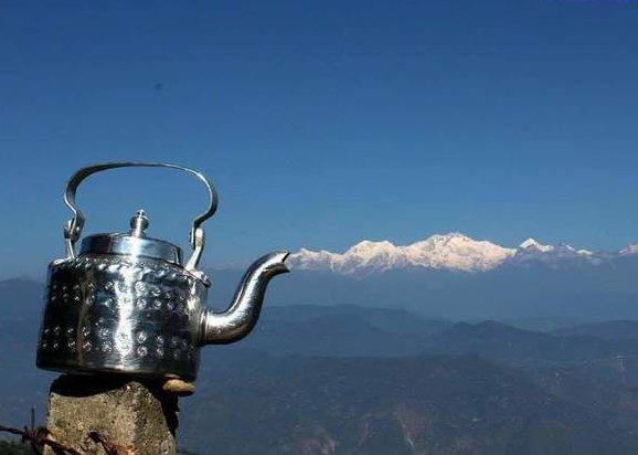 Boiling teapot غرائب الصور حول العالم